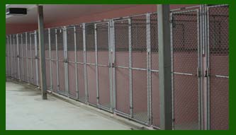 kennel at animal shelter